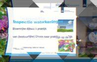 Kennisdag | Waterkeringen 2017 | P04 – Bloemrijk beleid – Peter Boone